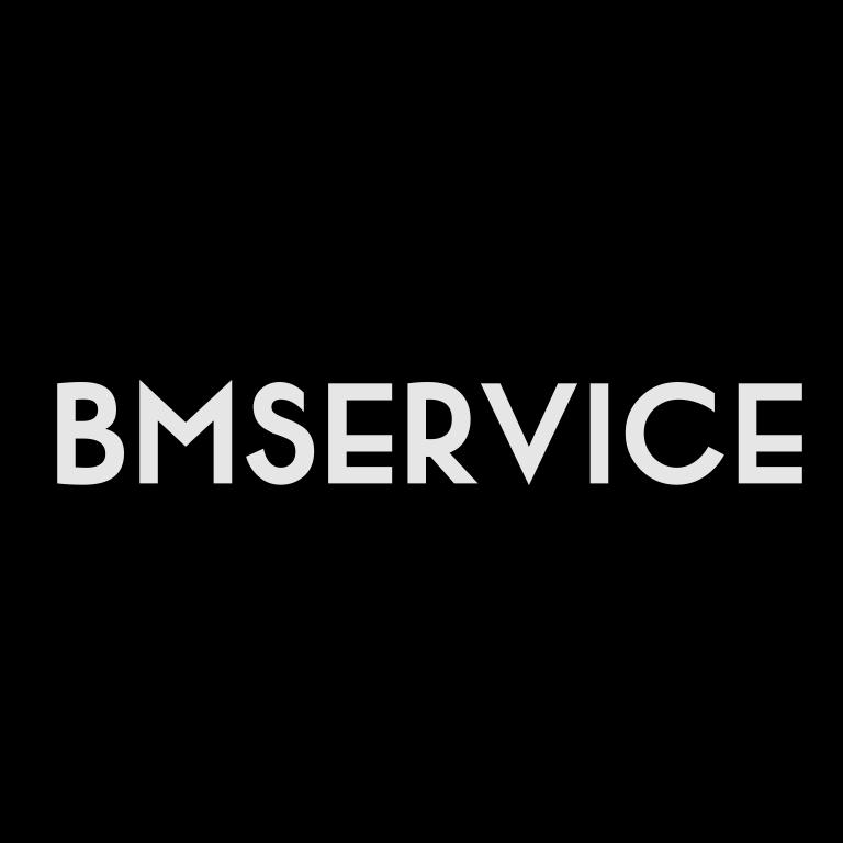 Логотип BMSERVICE